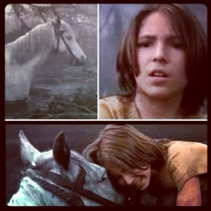 You're letting the sadness of the swamps get to you. You have to try. You have to care. ~ Atreyu to Artax, Neverending Story, 1984